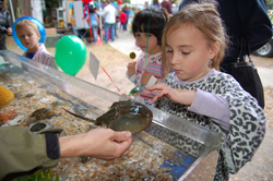 Free Kids' Fishing Clinic Promises Day of Learning and Fun